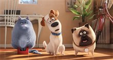 The Secret Life of Pets Photo 12
