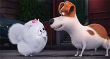 The Secret Life of Pets Photo 14