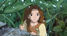 The Secret World of Arrietty (Dubbed) photo 5 of 11