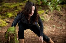 The Twilight Saga: Breaking Dawn - Part 2 Photo 18