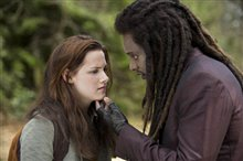 The Twilight Saga: New Moon Photo 1