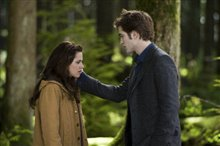 The Twilight Saga: New Moon Photo 3