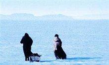 The Widow Of Saint-Pierre Photo 6