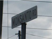 The World According to Monsanto Photo 1