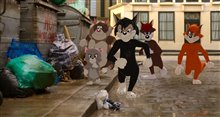 Tom & Jerry Photo 10