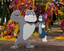 Tom & Jerry Photo 26