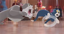 Tom & Jerry Photo 28