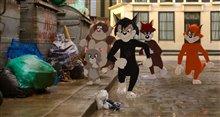 Tom & Jerry (v.f.) Photo 10