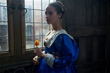 Tulip Fever photo 1 of 3 Poster