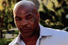 Tyson Photo 1