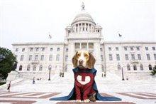 Underdog Photo 10
