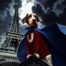 Underdog Photo 23