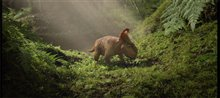 Walking With Dinosaurs Photo 5