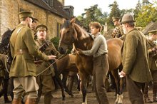 War Horse photo 12 of 17