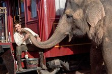 Water for Elephants photo 2 of 8