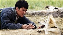 Wolf Totem photo 2 of 4 Poster