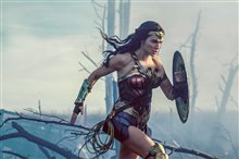 Wonder Woman photo 27 of 70