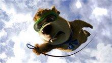 Yogi Bear Photo 25
