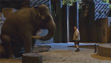 Zookeeper Photo 5