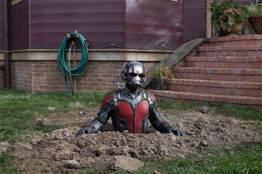 Ant-Man Poster Large