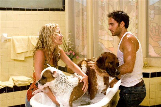 Beverly Hills Chihuahua Photo 5 - Large