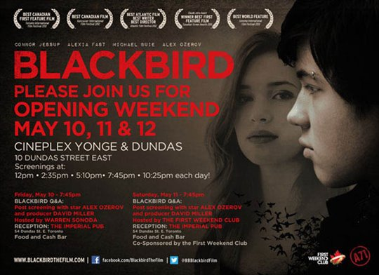 Blackbird Poster Large