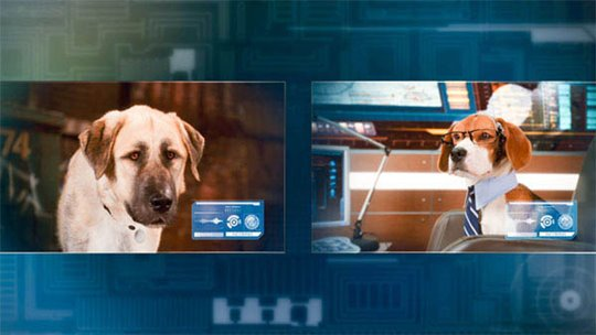 Cats & Dogs: The Revenge of Kitty Galore Poster Large