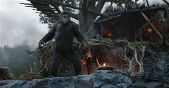 Dawn of the Planet of the Apes Photo 12 - Large