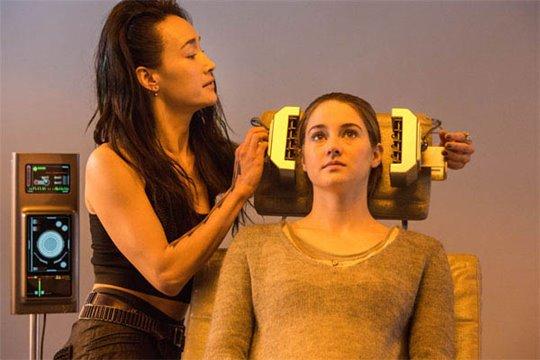 Divergent Photo 1 - Large