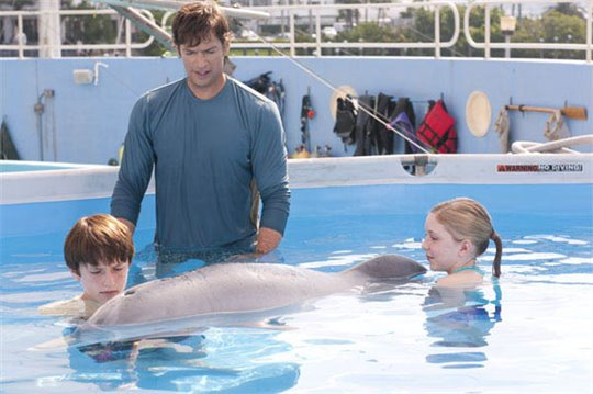 Dolphin Tale Photo 7 - Large
