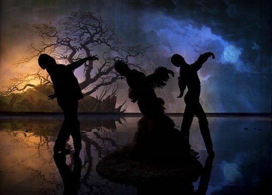 Flamenco, Flamenco Photo 4 - Large