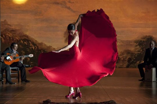 Flamenco, Flamenco Poster Large
