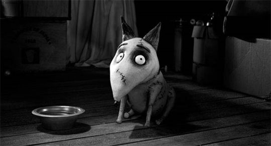 Frankenweenie Photo 8 - Large