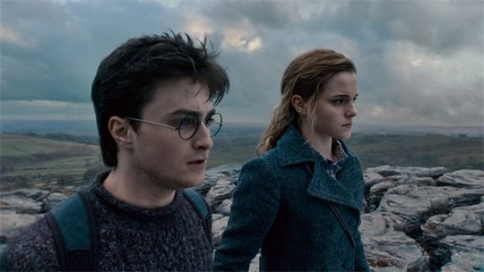 Harry Potter and the Deathly Hallows: Part 1 Photo 17 - Large