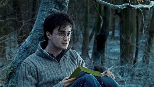 Harry Potter and the Deathly Hallows: Part 1 Photo 37 - Large
