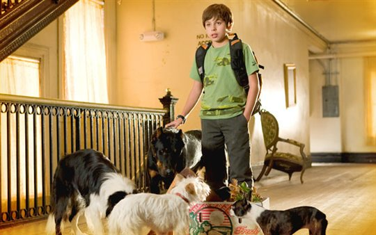 Hotel for Dogs Poster Large