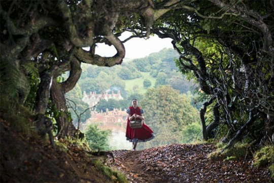 Into the Woods Photo 12 - Large