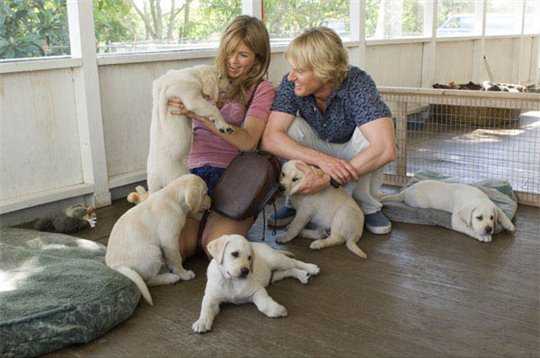 Marley & Me Photo 12 - Large