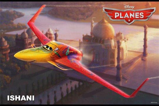 Planes Photo 24 - Large