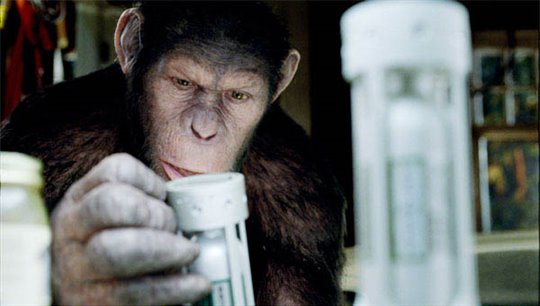 Rise of the Planet of the Apes Photo 4 - Large