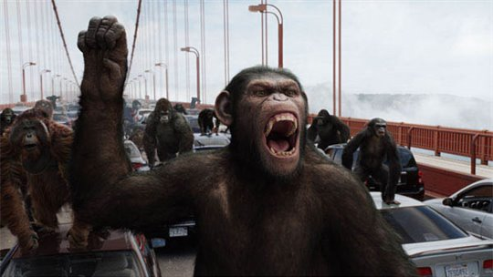 Rise of the Planet of the Apes Photo 10 - Large