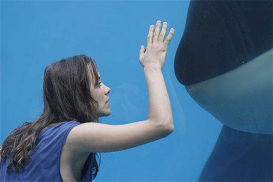 Rust and Bone Photo 7 - Large