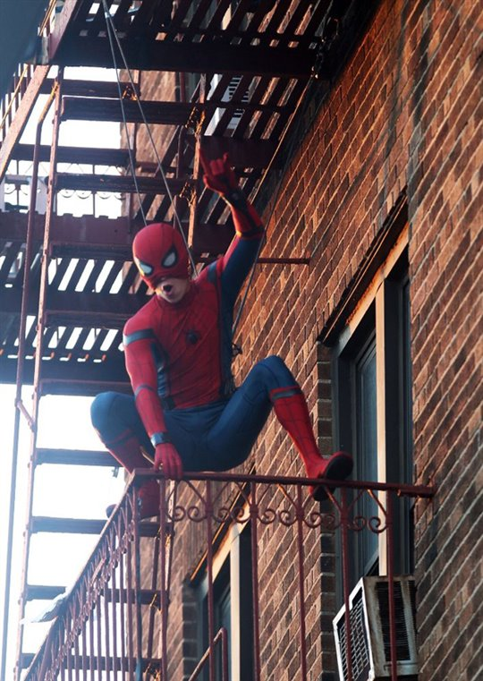 Spider-Man : Les retrouvailles Photo 21 - Grande