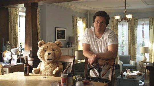 Ted Photo 5 - Large