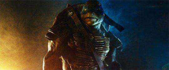 Teenage Mutant Ninja Turtles Photo 6 - Large