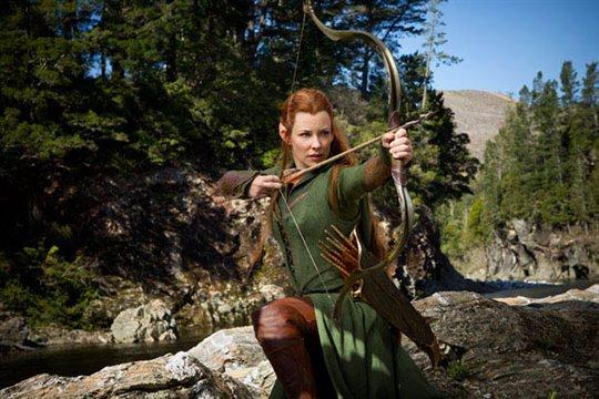 The Hobbit: The Desolation of Smaug Photo 6 - Large