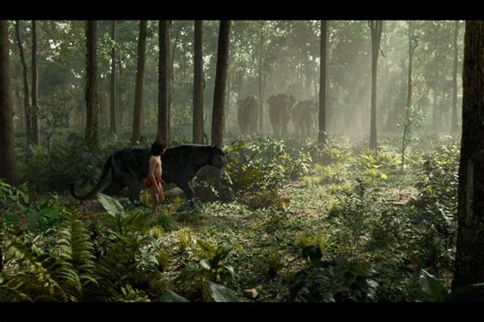 The Jungle Book Poster Large