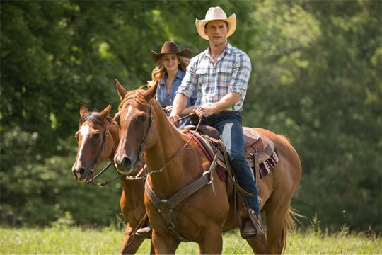 The Longest Ride Poster Large