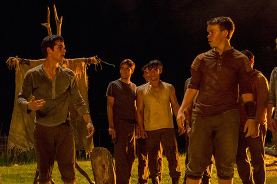 The Maze Runner Photo 2 - Large