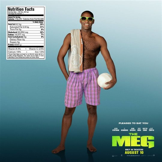 The Meg Poster Large